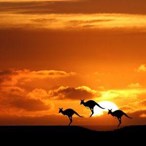 Viaje de novios Australia